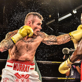 The Slam 2 by Alexius van der Westhuizen - Sports & Fitness Boxing ( punch, lounge, sport, boxing, emperor's palace, sports bar, bar, sweet science, contact )