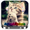 Animal Funny Ringtone icon