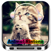 Animal Funny Ringtone
