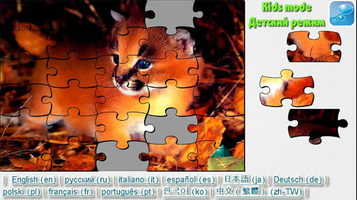 Cats and Kittens Puzzle
