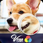 Venn Dogs: Circle Jigsaw