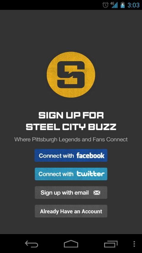 Steel City Buzz- screenshot