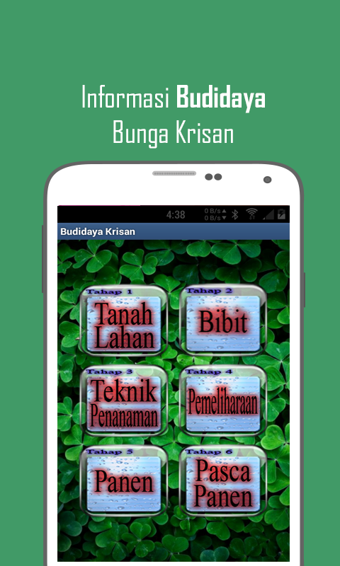 Budidaya Bunga Krisan - screenshot
