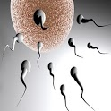 Increase Your Sperm Volume icon