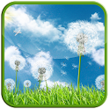 Galaxy Series Dandelion LWP icon