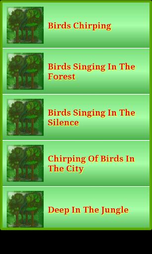 自然森林和叢林聲音