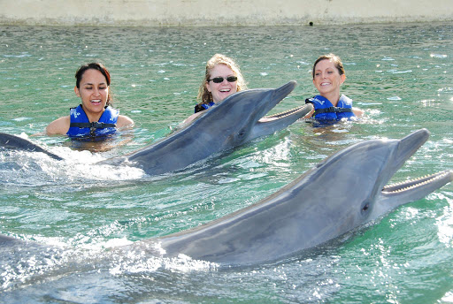 Swimming with dolphins in Cancun.