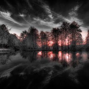 HARDWICK PARK SUNSET by Ian Taylor - Landscapes Sunsets & Sunrises ( colour, splash, park, sunset, trees, hardwick, black )