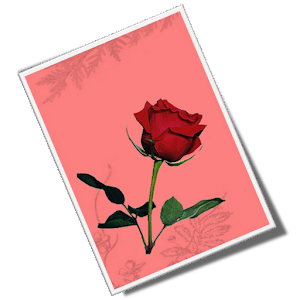 Hindi Greeting Cards Gallery for Android