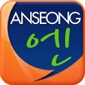 안성n icon