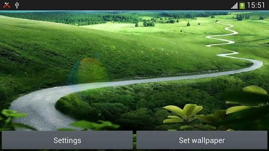 動態太陽草的土地生活的牆紙