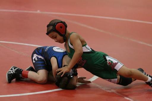 Wrestling Wars