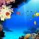 Tropical Coral Reef Watery LWP