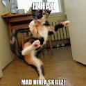 I Haz Mad Live Wallpaper icon