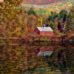 Along the River by Janet Lyle - Landscapes Waterscapes ( autumn, foliage, fall )
