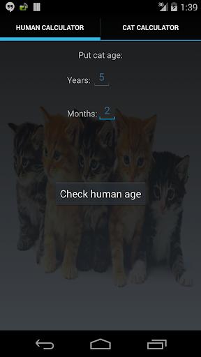 cat age