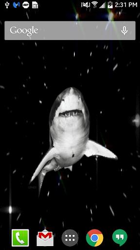空间鲨鱼动态壁纸