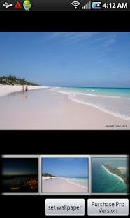 Island Life screenshot