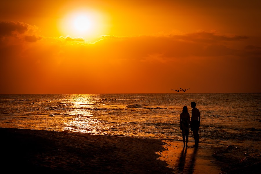 Sunset in Varadero by Jack Brittain - Landscapes Sunsets & Sunrises ( sunset, couple, ocean, beach, varadero, atlantic, silohette, people, pelican, evening, cuba,  )