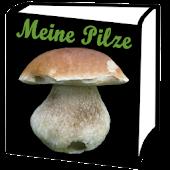 Meine Pilze (Pilzbestimmung)