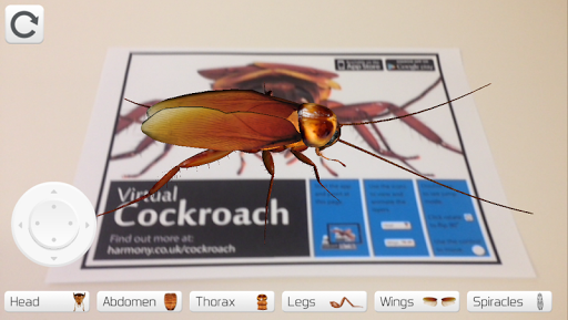 Virtual Cockroach
