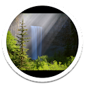 Mist Forest Live Wallpaper icon