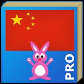 Chinese Learn Language Pro