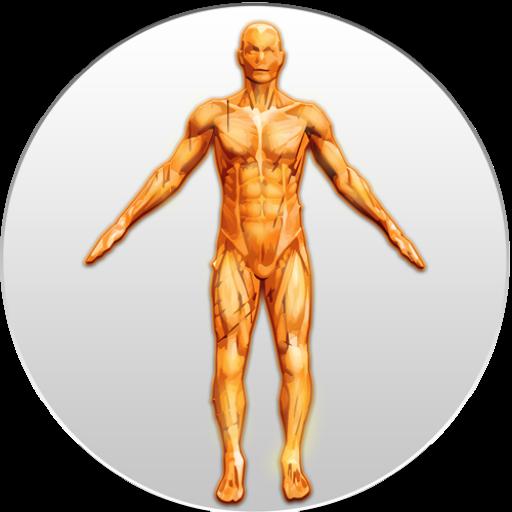 Anatomy Exam 教育 App LOGO-APP試玩