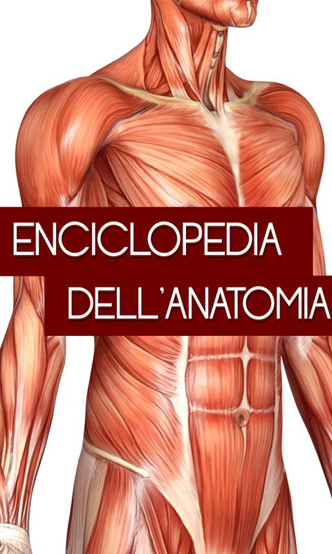 Encyclopedia of anatomy - screenshot
