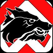 Sturmwölfe Jugger Bielefeld