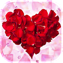 Rose Petals Live Wallpaper icon