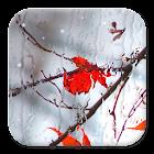 Blurry Frozen Window (adfree) icon