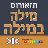 Hebrew Thesaurus
