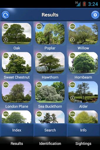 Tree Id - British Trees