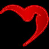 رسائل الحب الجديدة ٢٠١٣