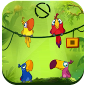Tiki Bird – Start Lockgames
