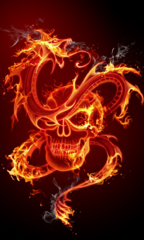 realistic fire skull wallpaper images pictures becuo
