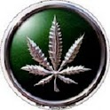 Medical Marijuana Jobs logo