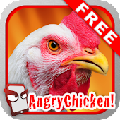 Angry Chicken Free!