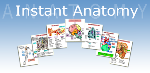 Free anatomy apps