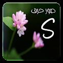 صور حرف S icon