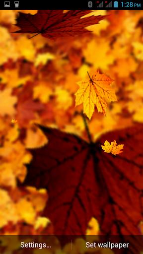 3D Leaf Falling Wallpaper
