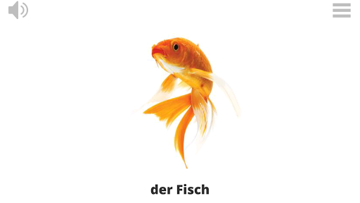Play Learn GERMAN