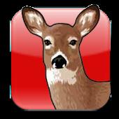Hunter Calendar