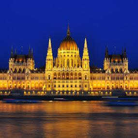 Blue Hour in Parliament - Budapest by Luigi Alloni - Buildings & Architecture Public & Historical ( budapest parliament bluehour reflections danube river building golden longexposure )