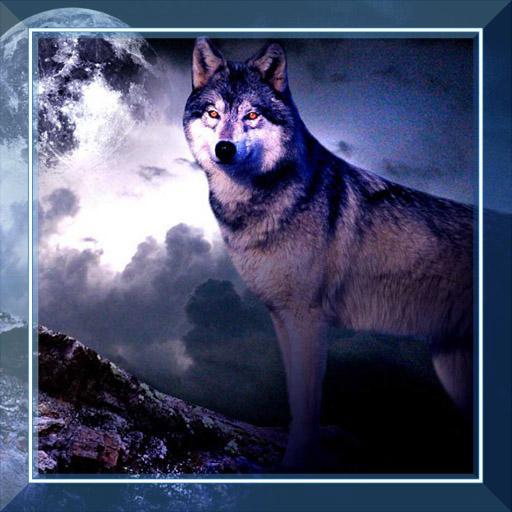 Wolves Night HD live wallpaper LOGO-APP點子