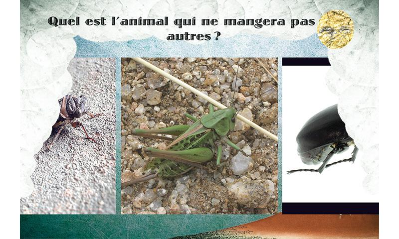 Provence- Vadrouilleur - screenshot