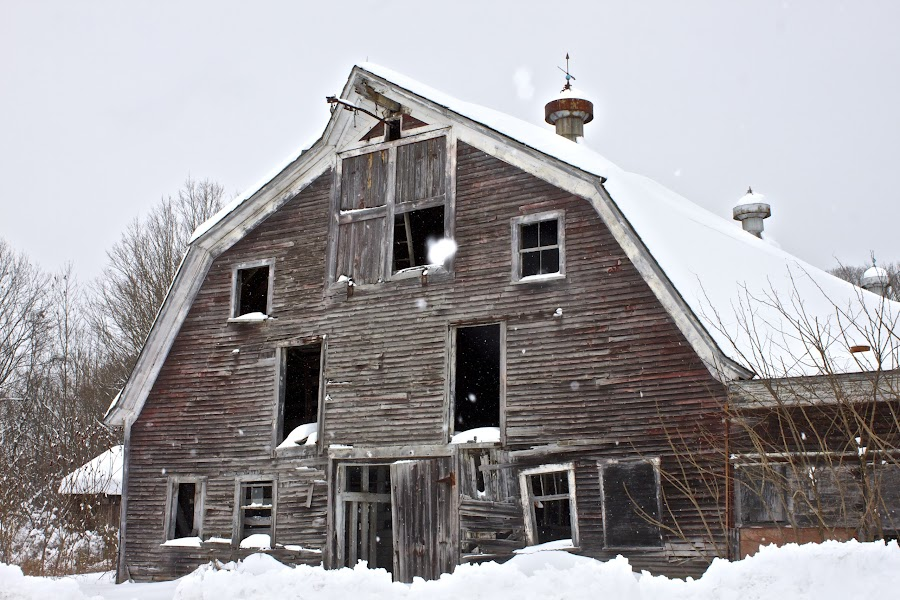 barn by Cassie Nyberg George - Buildings & Architecture Decaying & Abandoned (  )