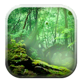 Forest 3D Background