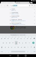 Screenshot of Chrome Browser - Google